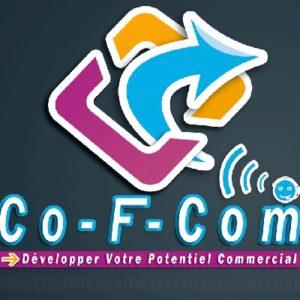 Interview de Fabien Charles, directeur de Co-F-Com : « Diriger une entreprise : garder un œil sur la concurrence »
